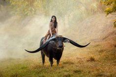 35PHOTO - Saravut Whanset - Handsomebuffalo and Beuatiful Girl