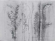 field and hedgerow: Prints