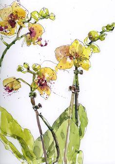 Yellow Orchids by Shari Blaukopf