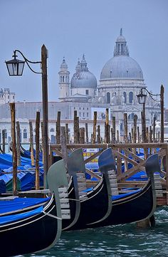 Santa Maria de le Salute: Venice, Italy One of the beautiful places I have visited. Places Around The World, Oh The Places You'll Go, Places To Travel, Places To Visit, Around The Worlds, Pisa, Santa Maria, Wonderful Places, Beautiful Places