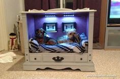 Multiple Pet Bed TV Console Upcycles