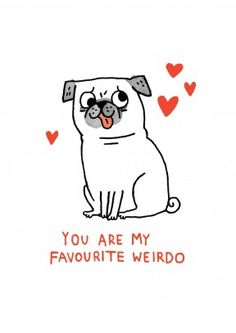 Favourite Weirdo|Funny Anniversary Card Show him or her how you really feel about them. A brilliant anniversary, valentine's day or general card. Perfect for your other half.