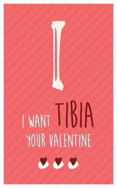 : I Want TIBIA your Valentine. - Funny Medical Valentine Cards for nurses, medics, physiotherapists. Valentines Quotes Funny, Funny Valentines Cards, Valentines Gifts For Boyfriend, Nerdy Valentines, Valentine Ideas, Nurse Quotes, Valentine's Day Quotes, Funny Medical Quotes, Medical Puns