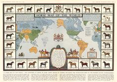 Horse Map of the World: origin of some thirty breeds of horses, 1936 #map #horses
