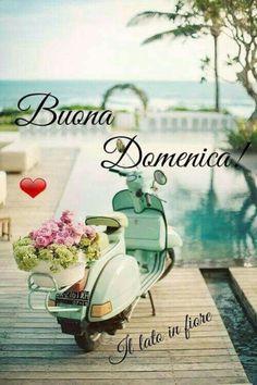 Buona Domenica amici 5020 Little Prince Quotes, Italian Greetings, Italian Memes, Good Morning Quotes, Good Night, Happy, Italy, Facebook, Sunday