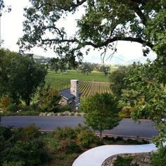 The view from the patio at Trinchero Winery on Hwy 29, just north of St. Helena
