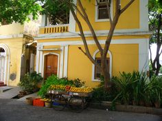 Read about the charming town of Pondicherry, replete with French influences, gorgeous architecture, and great food.