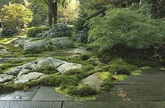 transition from garden to patio . shade garden and patio space . rock and moss garden