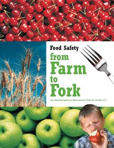 Food Safety From Food To Fork 5th - 7th Grade Lesson Plan | Lesson Planet