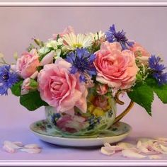 Roses in chintz cup.