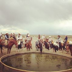 Cowboys and horses taking a break from a long cattle drive at Chico Basin Ranch. #ChicoBasinRanch