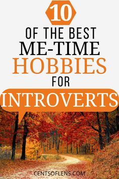 Are you an introvert in search of a new hobby? Find out what 10 of the best me-time hobbies for introverts are today! #introvert #hobbies #personalgrowth #goals #metime #lifehacks Introvert Personality, Introvert Quotes, Extroverted Introvert, Becoming A Better You, How To Become, Me Time, No Time For Me, Ambivert, Deep Questions
