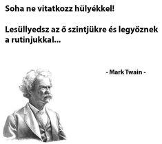 Mark Twain, Lyrics, Funny Pictures, Life Quotes, Wisdom, Lol, Words, Memes, Fanny Pics