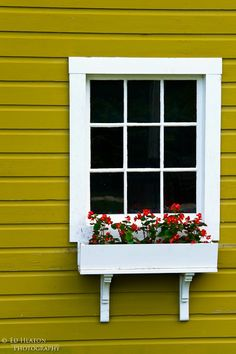 window box-love the look of these with the holders showing
