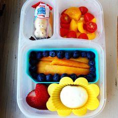 #foodforharper bento lunch www.facebook.com/FoodForHarper
