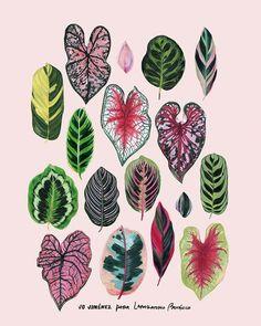 Jo Jiménez ® (@jojimenez) • Fotos y vídeos de Instagram Paper Plants, Leaf Drawing, Botanical Art, Nail Tips, Watercolor Paintings, Watercolour, House Plants, Needlework, Plant Leaves