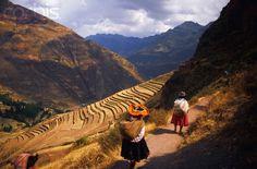 PERÚ | Fotos de paisajes, flora, fauna y minerales | Fotos de paisagens, flora, fauna e minerais - SkyscraperCity
