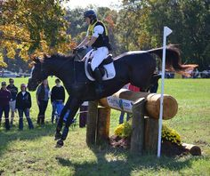 AP Prime, grandson of the great A.P. Indy, and his owner/rider Leah Lang-Gluscic rode their hearts out at Fair Hill last weekend,  The Fair Hill course wound up testing everything they had. They $750 #OTTB has qualified for Rolex