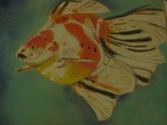 gold fish soft pastel,on carson paper 8x10 inch