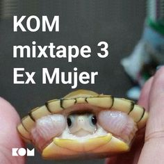 "Check out ""KOM Mixtape 3 - Ex Mujer"" by KOM on Mixcloud Mixtape, Teddy Bear, Check"