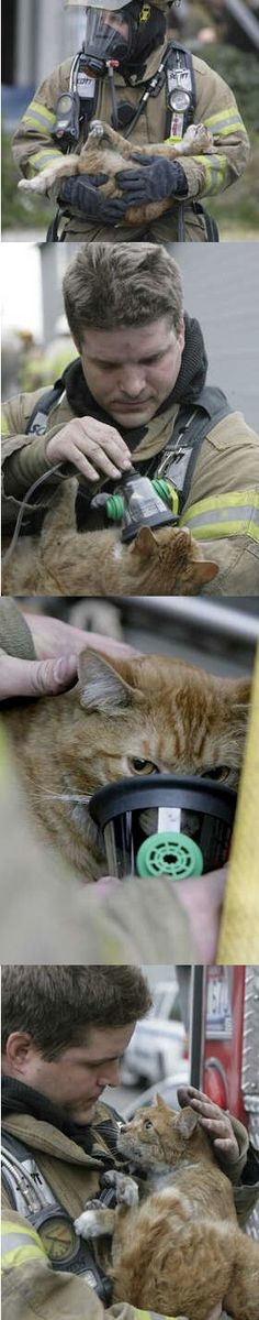 The cat with 9 lives saved by a fireman