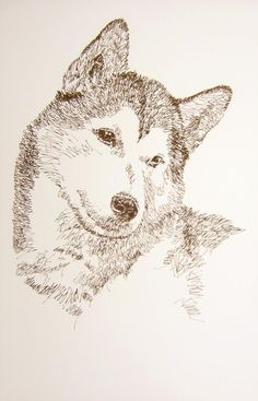 """Siberian Husky: Dog Art Portrait by Stephen Kline - drawDOGS.com These unique fine art 11""""x 17"""" lithographs, created by drawing the name of the breed over and over, are hand signed and numbered. He can even add the name of your dog into the art. His collectors number in the thousands from over 20 countries and every state in the US. Kline's dog art has generated tens of thousands of dollars for dog rescues worldwide."""