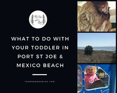 What to Do in Mexico Beach & Port St. Joe Florida With a Toddler Travel Tips With Toddlers, Toddler Travel, Port St Joe Florida, Dead Of Summer, Mexico Culture, Mexico Food, Mexico Resorts, Beach Toys, Visit Mexico