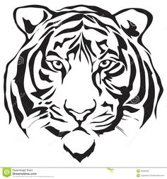 Face Tiger - Download From Over 44 Million High Quality Stock Photos, Images…