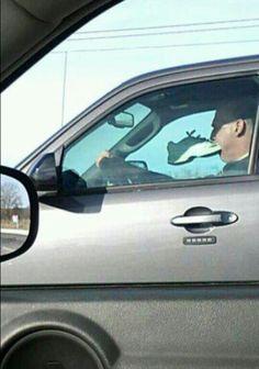 Road rage..?