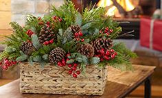Holiday Greenery Projects