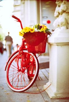 A red bike with red basket of yellow flowers. My Favorite Color, My Favorite Things, Cycle Chic, Bicycle Art, Red Aesthetic, Arte Floral, Shades Of Red, Little Red, Yellow Flowers