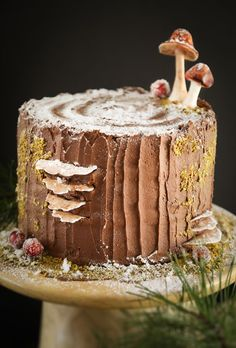Mulled Wine Stump de Noël Cake A delicious mulled wine chocolate cake recipe (all fancied up Bûche de Noël style with black cherry buttercream filling -swoon) Noel Cake Recipe, Christmas Desserts, Christmas Baking, Christmas Log Cake, Holiday Baking, Yule Log Cake, Woodland Cake, Woodland Fairy, Wood Cake