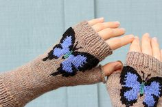 Butterfly Fingerless Gloves/Arm Warmers by Kimberly Porter