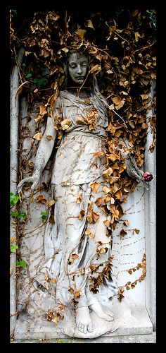 Art Nouveau Statue / Viena, Austria -NOT a weeping angel (DON'T BLINK!) gotta get my nerd on from time to time. Cemetery Angels, Cemetery Statues, Cemetery Art, Cemetery Headstones, Art Nouveau, Old Cemeteries, Graveyards, Art Sculpture, Garden Sculpture
