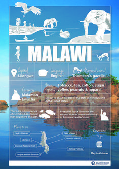 Malawi Country Information infographic. #Africa #Travel