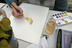 Lizzie Harper botanical illustration workshop at Treberfydd Walled garden Painting Workshop, Painted Leaves, Spring Summer 2018, Botanical Illustration, Autumn Leaves, Drawings, Walled Garden, Watercolors, Objects