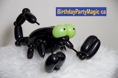 This little won't sting, he will only pop! Balloon Animals, Scorpion, Ottawa, Balloons, Birthday Parties, Pop, Birthday Celebrations, Popular, Anniversary Parties