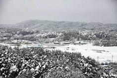 강릉 설경