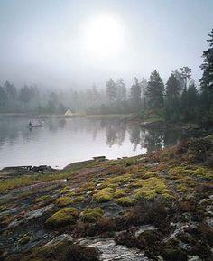 In westelijk Dalsland op de grens met Noorwegen ligt het Tresticklan Nationaal Park. Met een oppervlakte van 30 km² is dit park het grootste onbebouwde bosgebied zonder wegen in Zuid Zweden. Je vindt hier ongerepte bossen, mooie meren en opmerkelijk terrein. Vanaf Orshöjden, in het hart van Tresticklan, volgt de blik rondom een horizon van onafgebroken bos. Noch kale rotsen, noch jonge aanplant zul je zien. Het is bijna drie kilometer naar de dichtstbijzijnde weg. North Europe, Stockholm, Belgium, Netherlands, Safari, Places To Visit, Harry Potter, Germany, Traveling