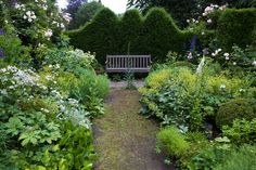 Garden in Buggenum the Netherlands