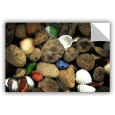 ArtWall Kevin Calkins Petoskey Stone Collage Iii ArtAppealz Removable Wall Art, Size: 16 x 24, Brown
