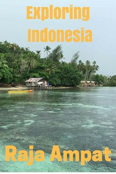 This is our video of how we went exploring Raja Ampat in West Papua, Indonesia. We were privileged to have this opportunity to discover the archipelago of Raja Ampat, both above and below water, and to also see a little of Doom island just off the gateway city of Sorong.