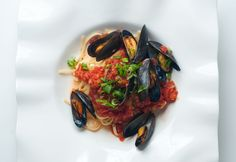Tomato Basil Mussels Served Over Pasta Tomato Basil, Mussels, Clams, Fish And Seafood, Entrees, Nom Nom, Pasta, Mussel Recipes, Fresh