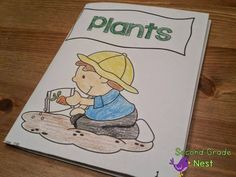 Plants Activities and Lessons- Mini Book
