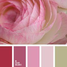 rose color palette