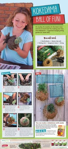 It's mucky, it's creative, it's the latest craze - and it's so much fun! Try making your very own Kokedama - a Japanese hanging string garden (or 'mossball'). Succulent Terrarium, Succulents Garden, Garden Plants, Small Plants, Air Plants, Indoor Plants, Plant Projects, Garden Projects, Mini Plantas