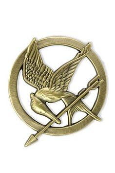 Mockingjay pin. Can't say I wouldn't buy this...