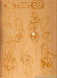 ••• ‡‡‡‡‡‡ ••• The • Book • of • Bones ••• ‡‡‡‡‡‡ ••• - Page 26 Figure Drawing Tutorial, Male Figure Drawing, Figure Sketching, Figure Drawing Reference, Anatomy Reference, Anatomy Sketches, Anatomy Drawing, Anatomy Art, Drawing Sketches