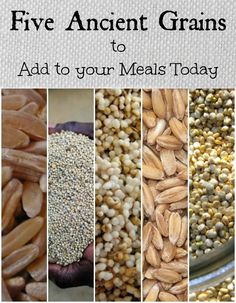 Five Ancient Grains You Can Easily Add To Your Meals Today (scheduled via http://www.tailwindapp.com?utm_source=pinterest&utm_medium=twpin&utm_content=post244839&utm_campaign=scheduler_attribution)