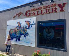 Teshia Art Gallery in downtown Jackson Hole Jackson Hole, Park City, Wyoming, Galleries, Original Paintings, Art Gallery, Fine Art, Art Museum, Visual Arts